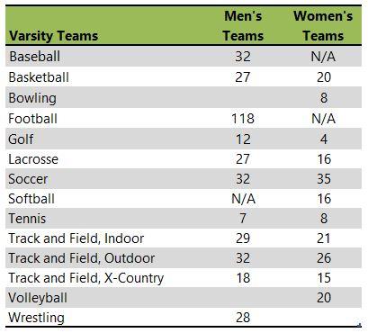 Elmhurst College athletic teams